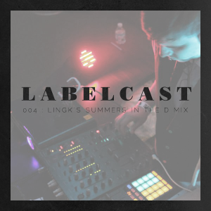 Labelcast 004: Lingk's Summers In The D Mix
